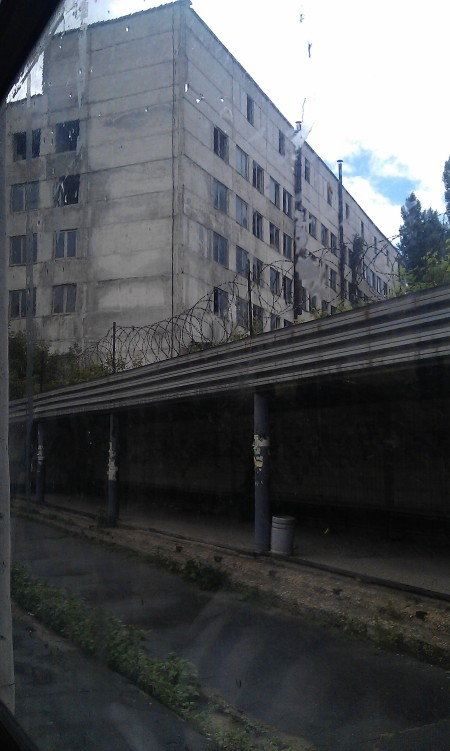 IMAG0293